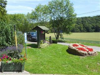 Batiflor parc jardin jardinier entretien entreprise for Entretien jardin 66